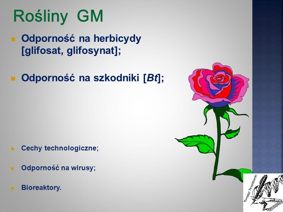 Rośliny GM Odporność na herbicydy [glifosat, glifosynat]; Odporność na szkodniki [Bt]; Cechy technologiczne; Odporność na wirusy; Bioreaktory.