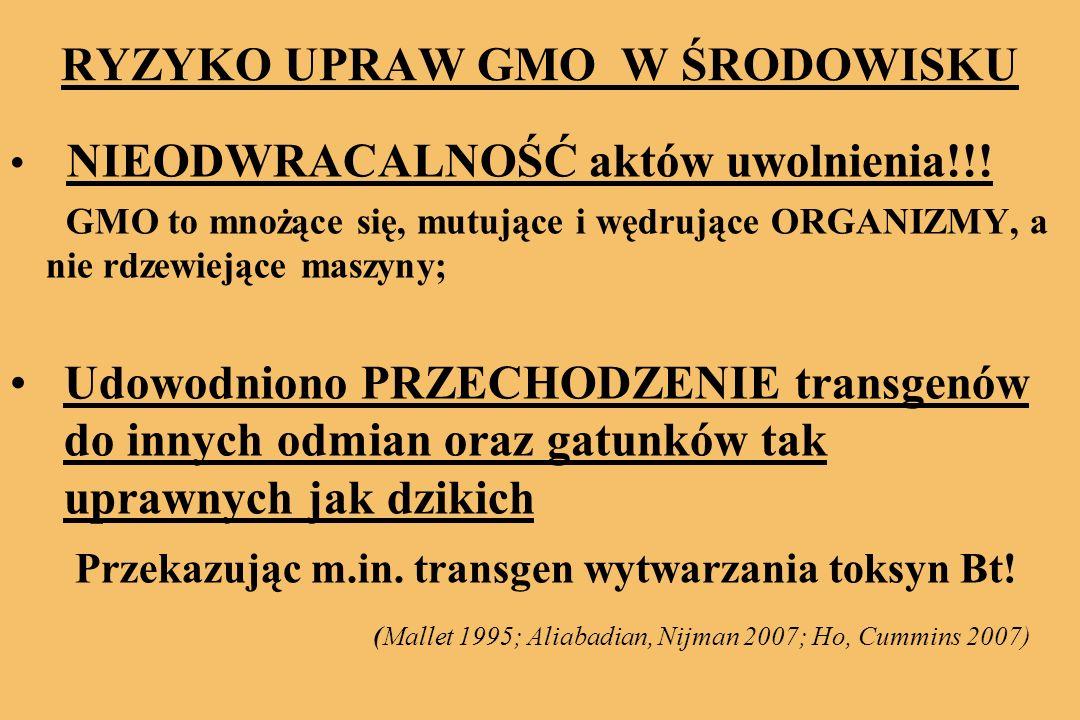 RYZYKO UPRAW GMO W ŚRODOWISKU NIEODWRACALNOŚĆ aktów uwolnienia!!.