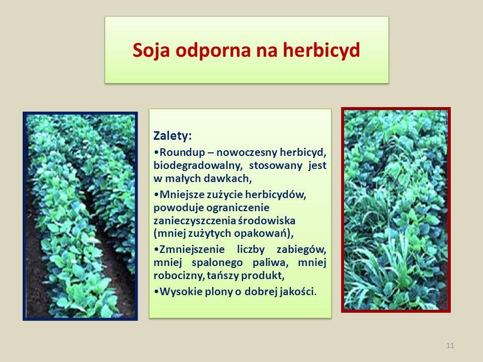 Soja odporna na herbicyd Zalety: Roundup – nowoczesny herbicyd, biodegradowalny, stosowany jest w małych dawkach, Mniejsze zużycie herbicydów, powoduj