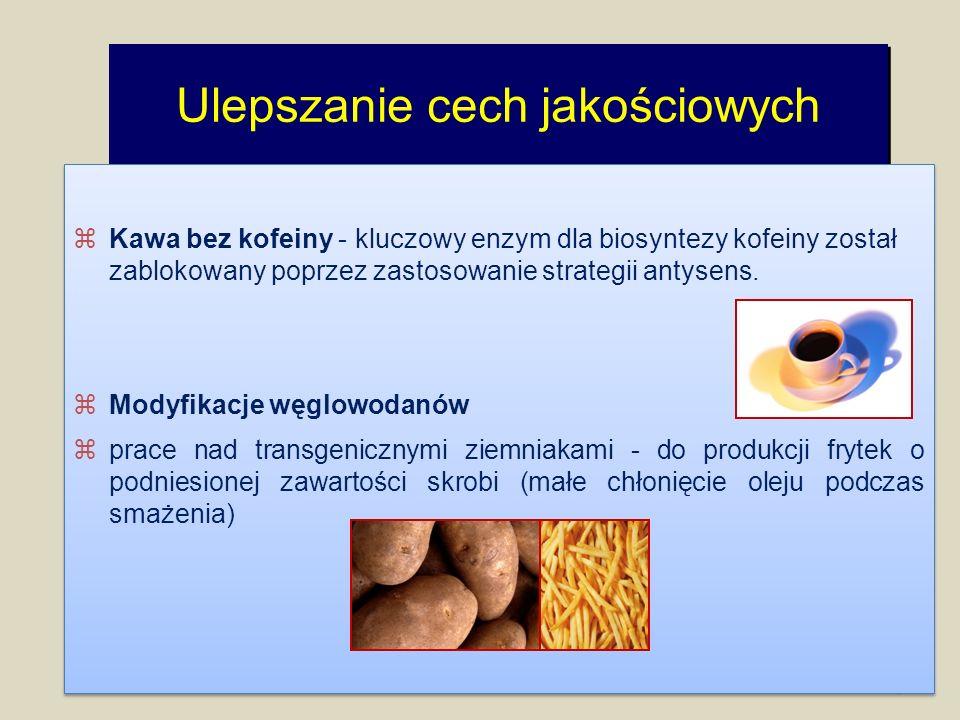 Ulepszanie cech jakościowych 16 zKawa bez kofeiny - kluczowy enzym dla biosyntezy kofeiny został zablokowany poprzez zastosowanie strategii antysens.