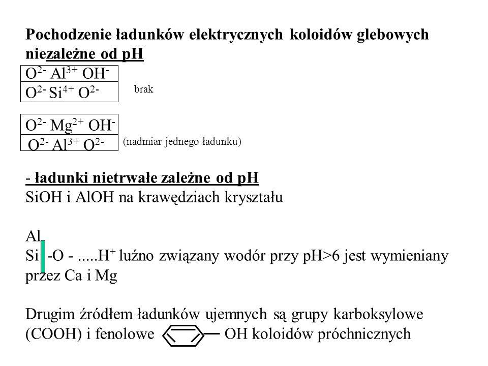 Pochodzenie ładunków elektrycznych koloidów glebowych niezależne od pH O 2- Al 3+ OH - O 2- Si 4+ O 2- brak O 2- Mg 2+ OH - O 2- Al 3+ O 2- (nadmiar j