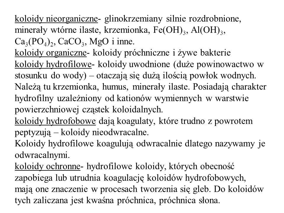 koloidy nieorganiczne- glinokrzemiany silnie rozdrobnione, minerały wtórne ilaste, krzemionka, Fe(OH) 3, Al(OH) 3, Ca 3 (PO 4 ) 2, CaCO 3, MgO i inne.