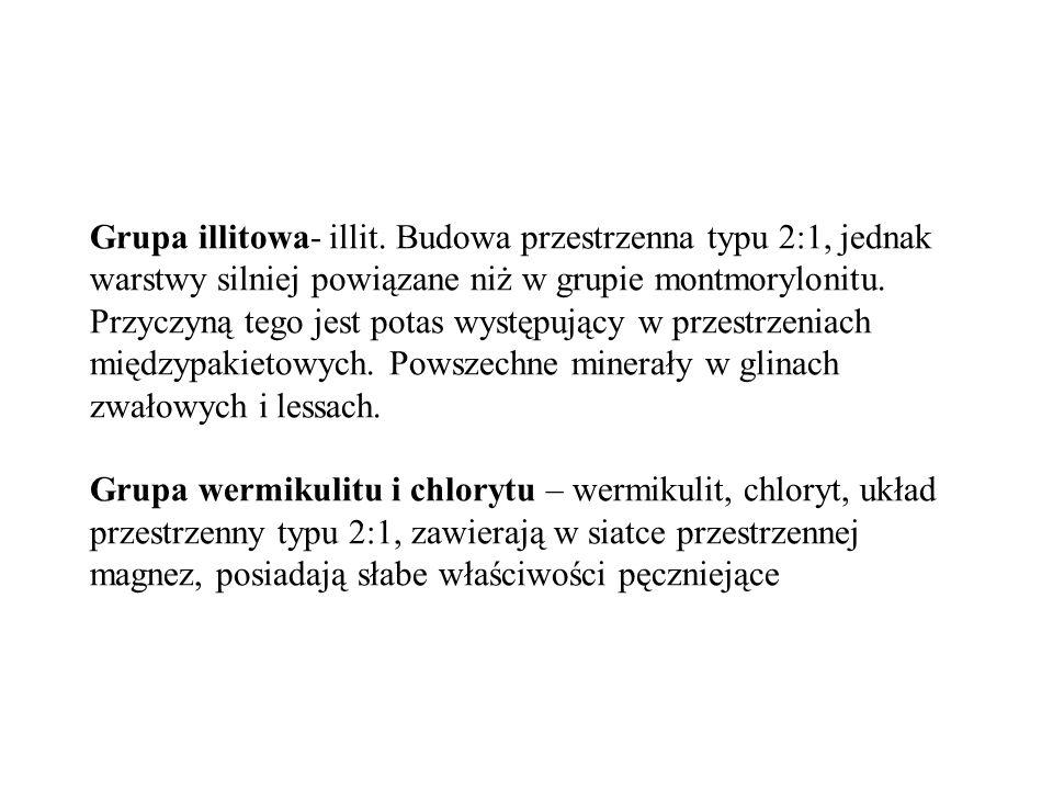 Grupa illitowa- illit. Budowa przestrzenna typu 2:1, jednak warstwy silniej powiązane niż w grupie montmorylonitu. Przyczyną tego jest potas występują