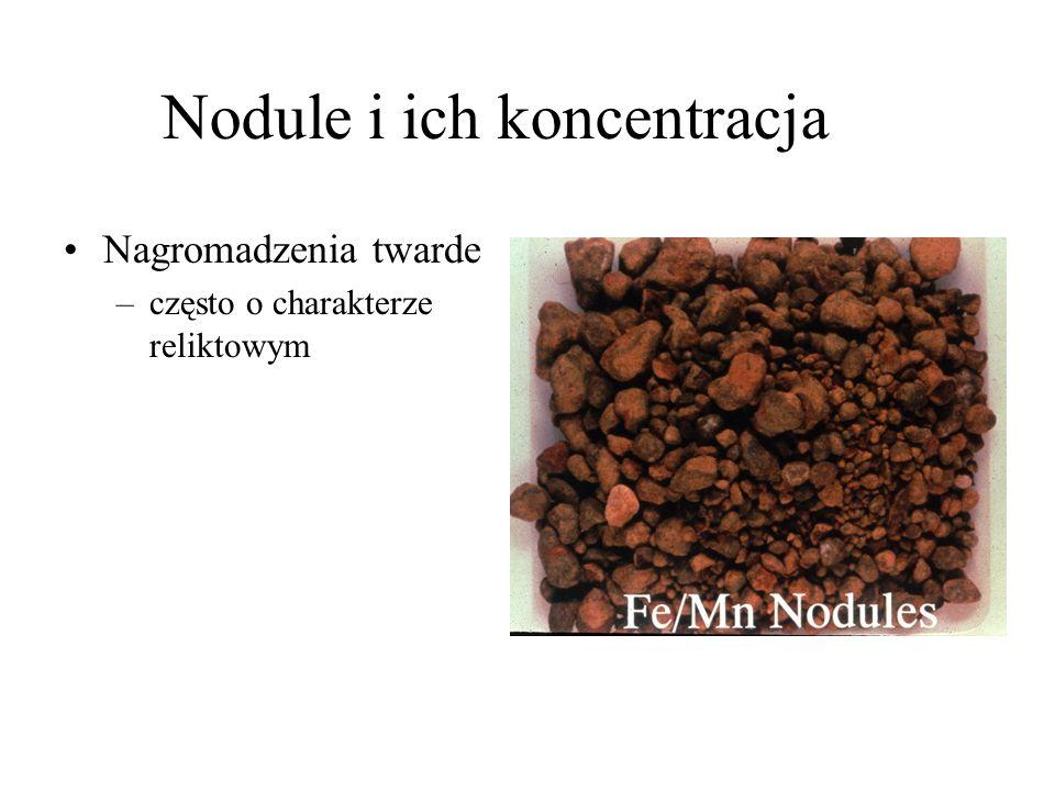 Nodule i ich koncentracja Nagromadzenia twarde –często o charakterze reliktowym