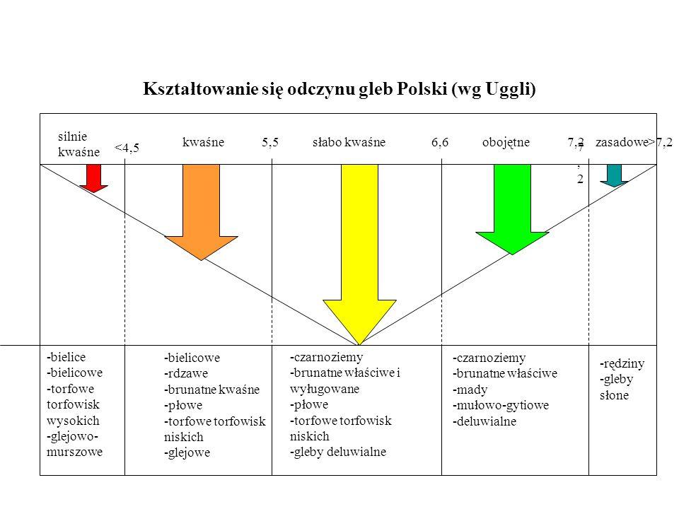 Kształtowanie się odczynu gleb Polski (wg Uggli) -bielice -bielicowe -torfowe torfowisk wysokich -glejowo- murszowe -bielicowe -rdzawe -brunatne kwaśn