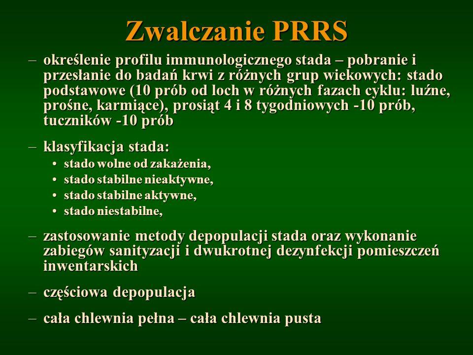 Zwalczanie PRRS –określenie profilu immunologicznego stada – pobranie i przesłanie do badań krwi z różnych grup wiekowych: stado podstawowe (10 prób o