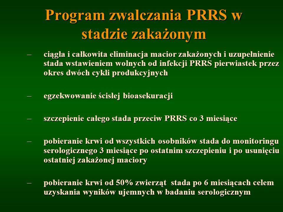 Program zwalczania PRRS w stadzie zakażonym –ciągła i całkowita eliminacja macior zakażonych i uzupełnienie stada wstawieniem wolnych od infekcji PRRS