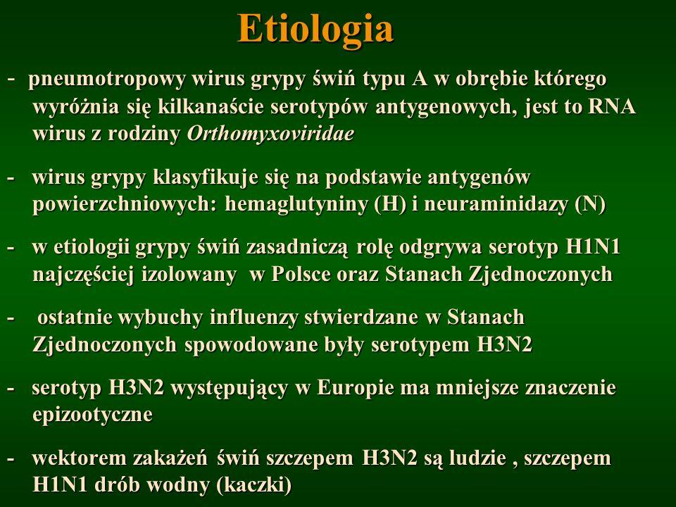 Etiologia pneumotropowy wirus grypy świń typu A w obrębie którego wyróżnia się kilkanaście serotypów antygenowych, jest to RNA wirus z rodziny Orthomy