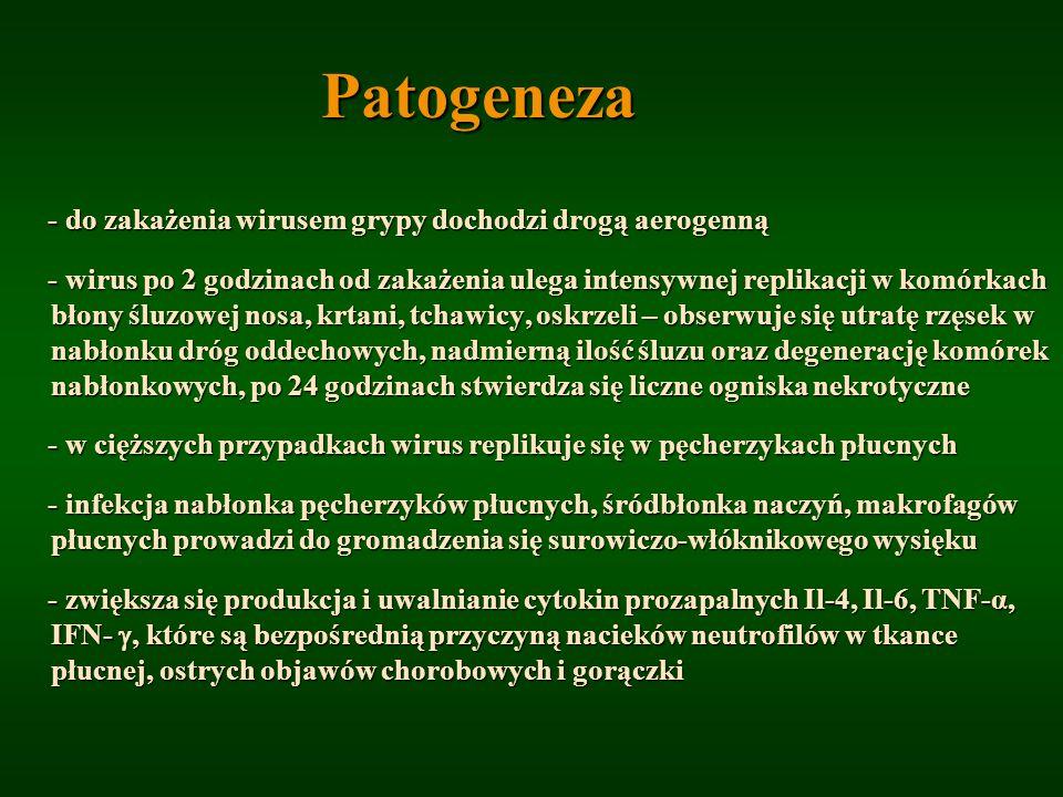 Patogeneza - do zakażenia wirusem grypy dochodzi drogą aerogenną - do zakażenia wirusem grypy dochodzi drogą aerogenną - wirus po 2 godzinach od zakaż