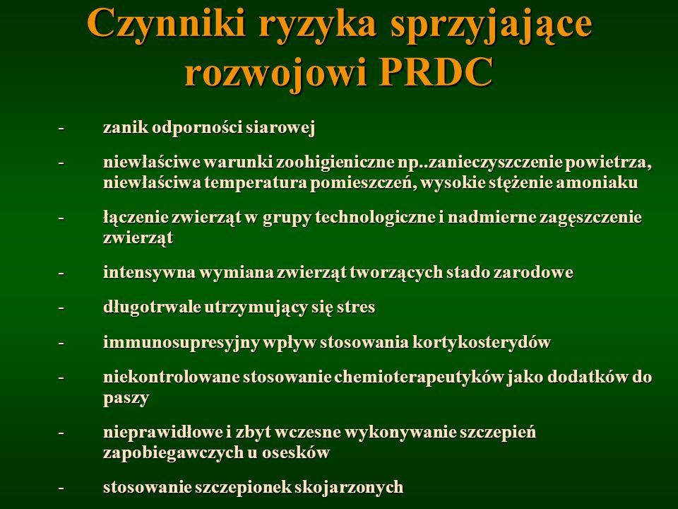 Czynniki ryzyka sprzyjające rozwojowi PRDC -zanik odporności siarowej -niewłaściwe warunki zoohigieniczne np..zanieczyszczenie powietrza, niewłaściwa