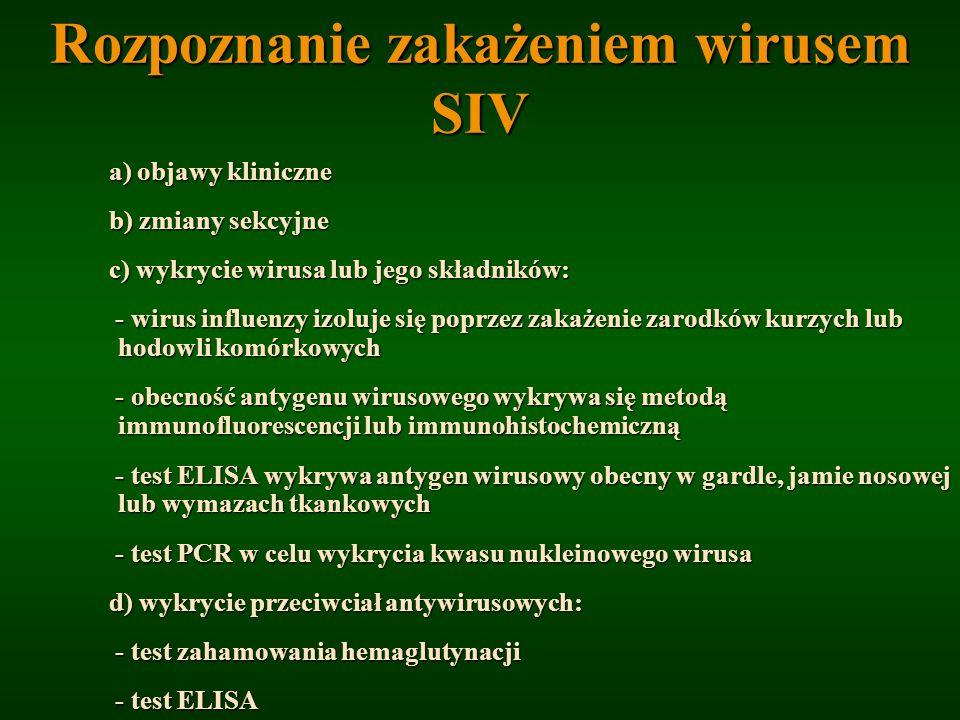 Rozpoznanie zakażeniem wirusem SIV a) objawy kliniczne a) objawy kliniczne b) zmiany sekcyjne b) zmiany sekcyjne c) wykrycie wirusa lub jego składnikó