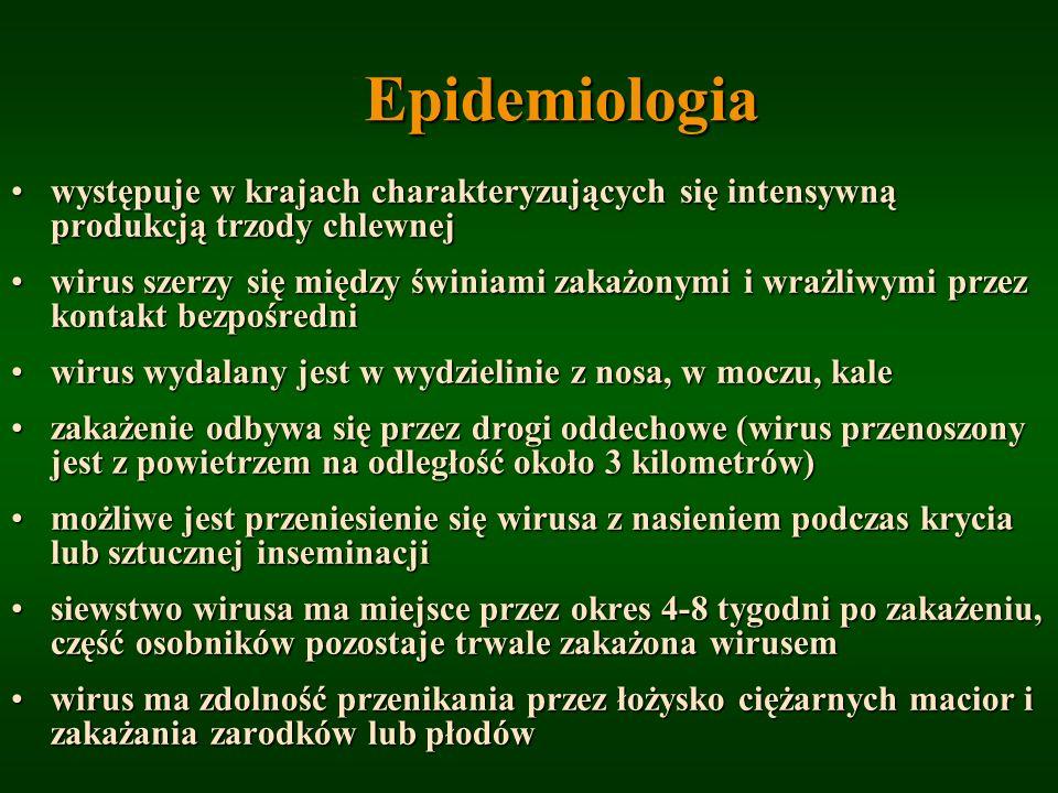 Epidemiologia występuje w krajach charakteryzujących się intensywną produkcją trzody chlewnejwystępuje w krajach charakteryzujących się intensywną pro