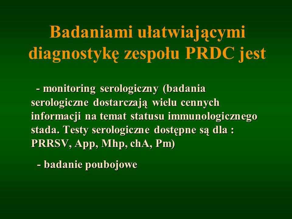 Badaniami ułatwiającymi diagnostykę zespołu PRDC jest - monitoring serologiczny (badania serologiczne dostarczają wielu cennych informacji na temat st