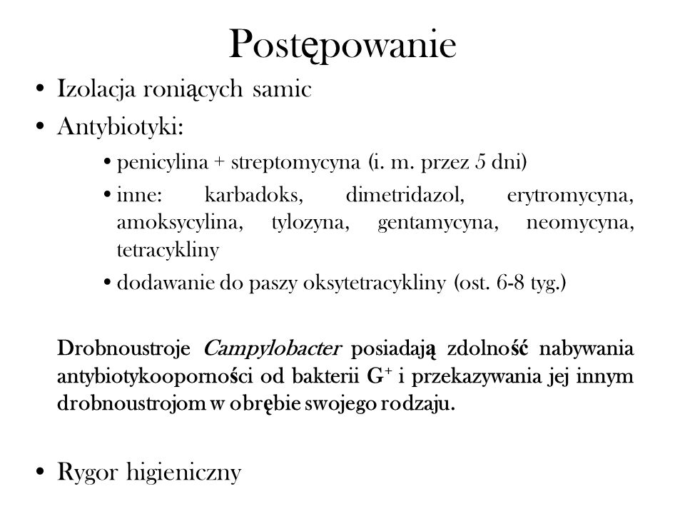 Post ę powanie Izolacja roni ą cych samic Antybiotyki: penicylina + streptomycyna (i. m. przez 5 dni) inne: karbadoks, dimetridazol, erytromycyna, amo