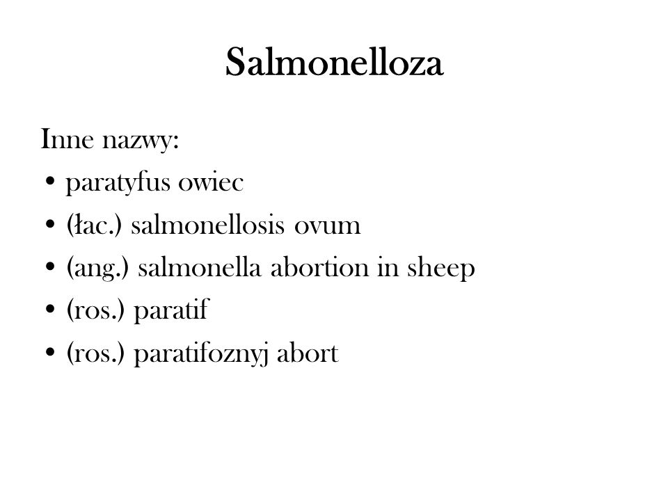 Salmonelloza Inne nazwy: paratyfus owiec ( ł ac.) salmonellosis ovum (ang.) salmonella abortion in sheep (ros.) paratif (ros.) paratifoznyj abort