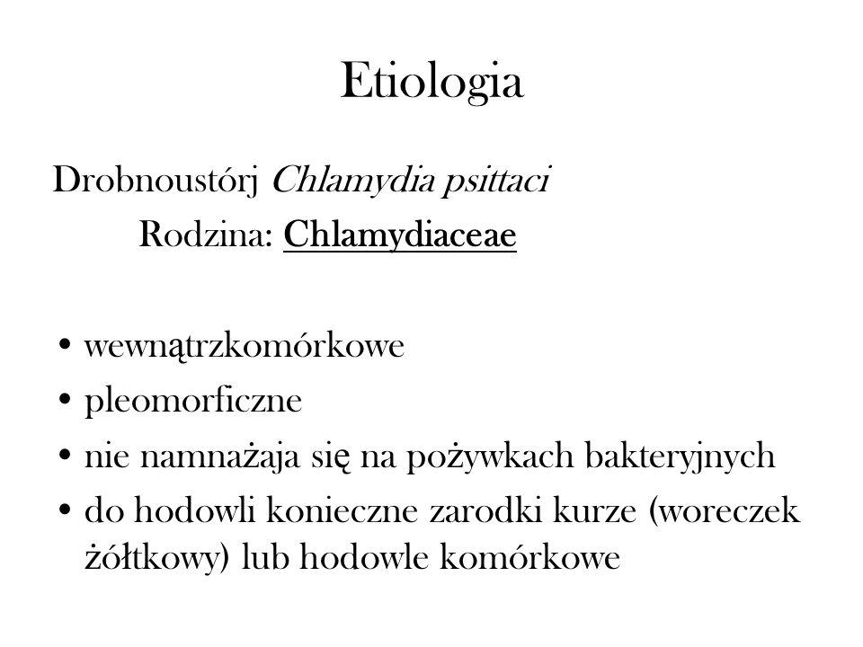 Etiologia Drobnoustórj Chlamydia psittaci Rodzina: Chlamydiaceae wewn ą trzkomórkowe pleomorficzne nie namna ż aja si ę na po ż ywkach bakteryjnych do