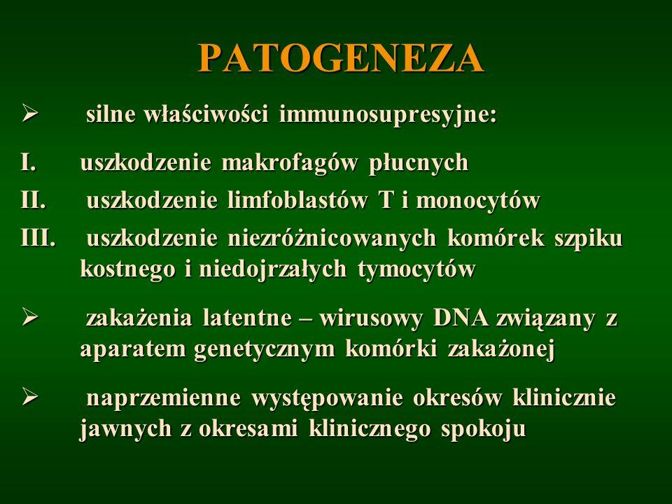 PATOGENEZA silne właściwości immunosupresyjne: silne właściwości immunosupresyjne: I.uszkodzenie makrofagów płucnych II. uszkodzenie limfoblastów T i