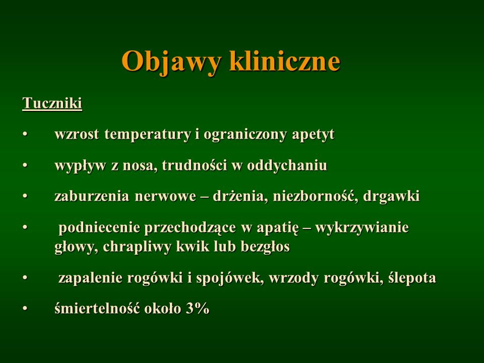 Objawy kliniczne Tuczniki wzrost temperatury i ograniczony apetytwzrost temperatury i ograniczony apetyt wypływ z nosa, trudności w oddychaniuwypływ z