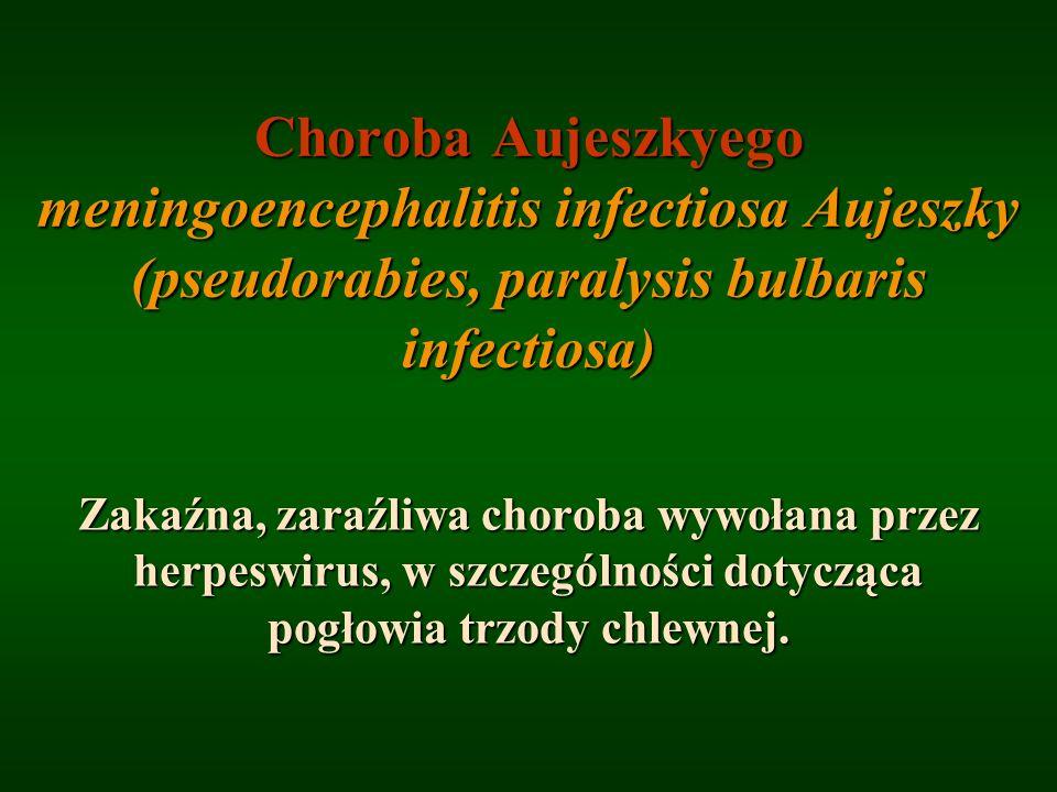 Choroba Aujeszkyego meningoencephalitis infectiosa Aujeszky (pseudorabies, paralysis bulbaris infectiosa) Zakaźna, zaraźliwa choroba wywołana przez he
