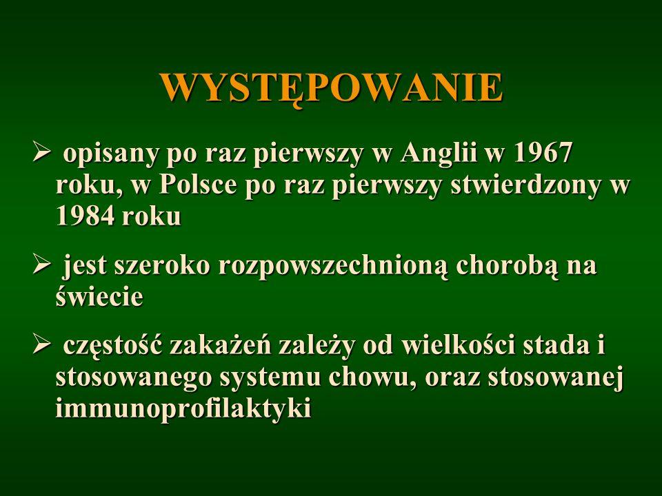 WYSTĘPOWANIE opisany po raz pierwszy w Anglii w 1967 roku, w Polsce po raz pierwszy stwierdzony w 1984 roku opisany po raz pierwszy w Anglii w 1967 ro