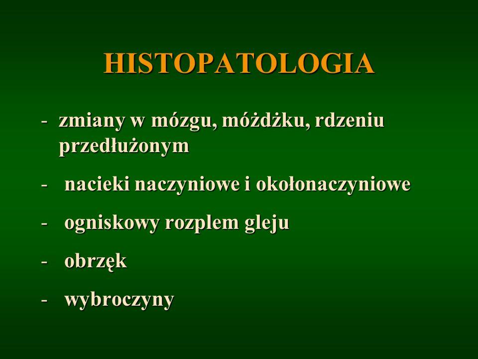 HISTOPATOLOGIA -zmiany w mózgu, móżdżku, rdzeniu przedłużonym - nacieki naczyniowe i okołonaczyniowe - ogniskowy rozplem gleju - obrzęk - wybroczyny