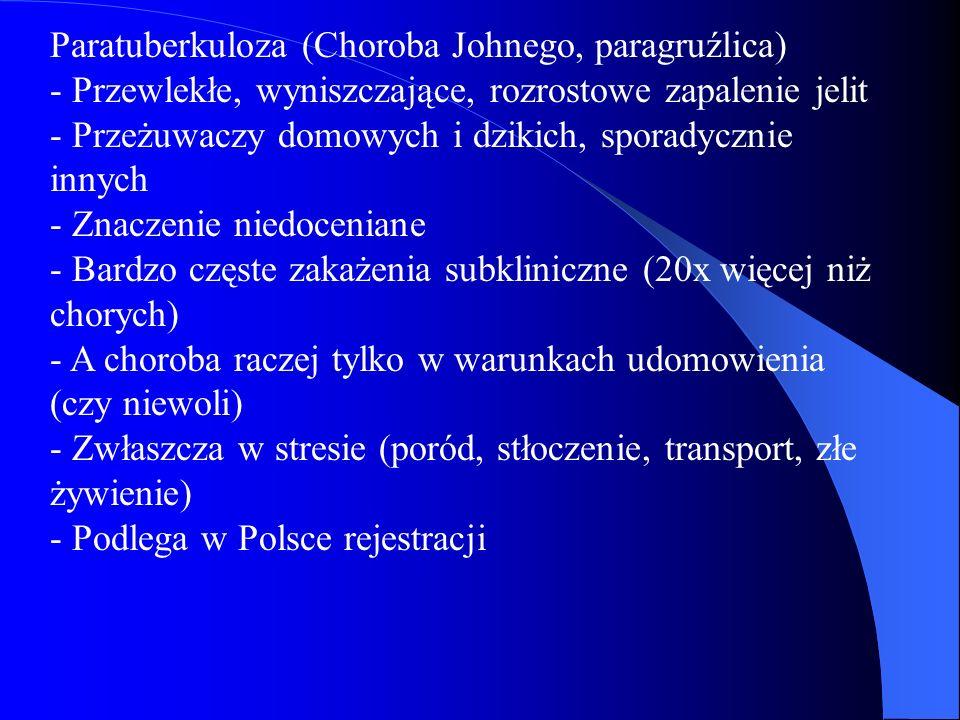 Paratuberkuloza (Choroba Johnego, paragruźlica) - Przewlekłe, wyniszczające, rozrostowe zapalenie jelit - Przeżuwaczy domowych i dzikich, sporadycznie