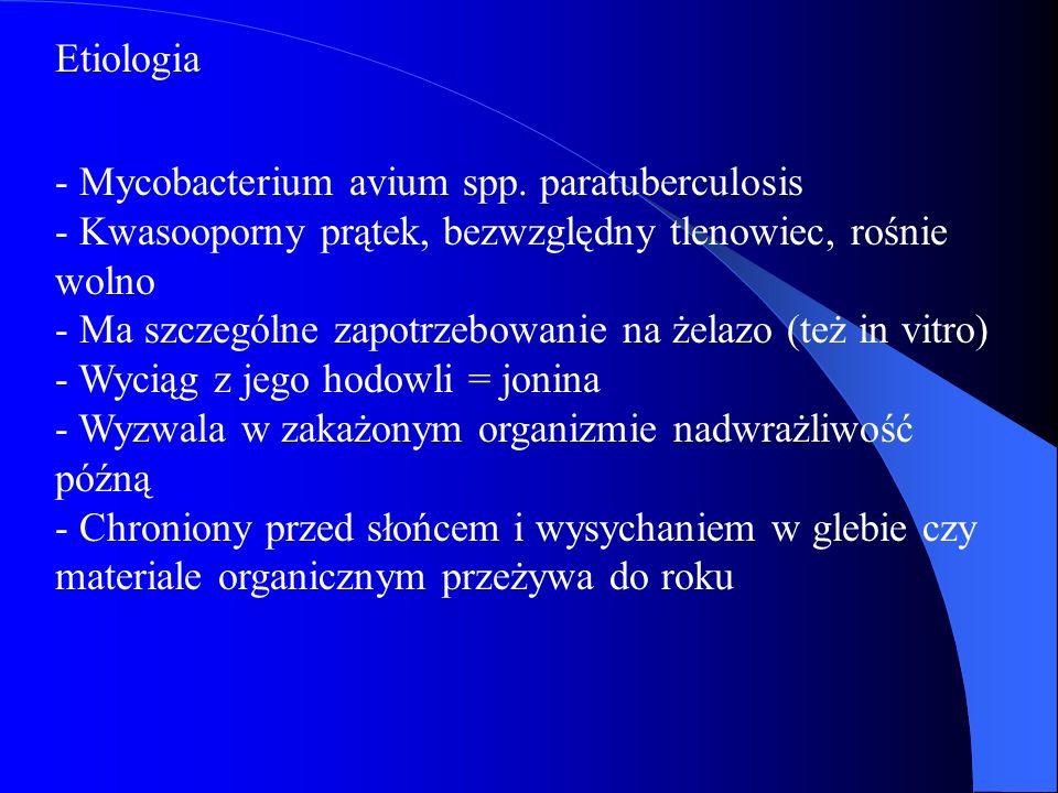 Etiologia - Mycobacterium avium spp. paratuberculosis - Kwasooporny prątek, bezwzględny tlenowiec, rośnie wolno - Ma szczególne zapotrzebowanie na żel