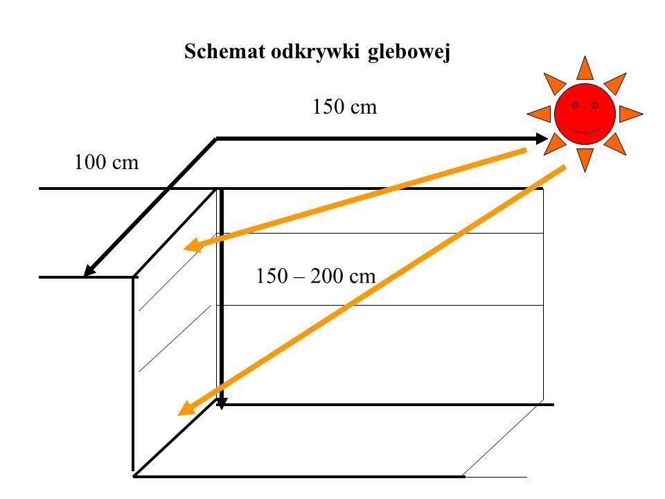 Schemat odkrywki glebowej 150 cm 100 cm 150 – 200 cm