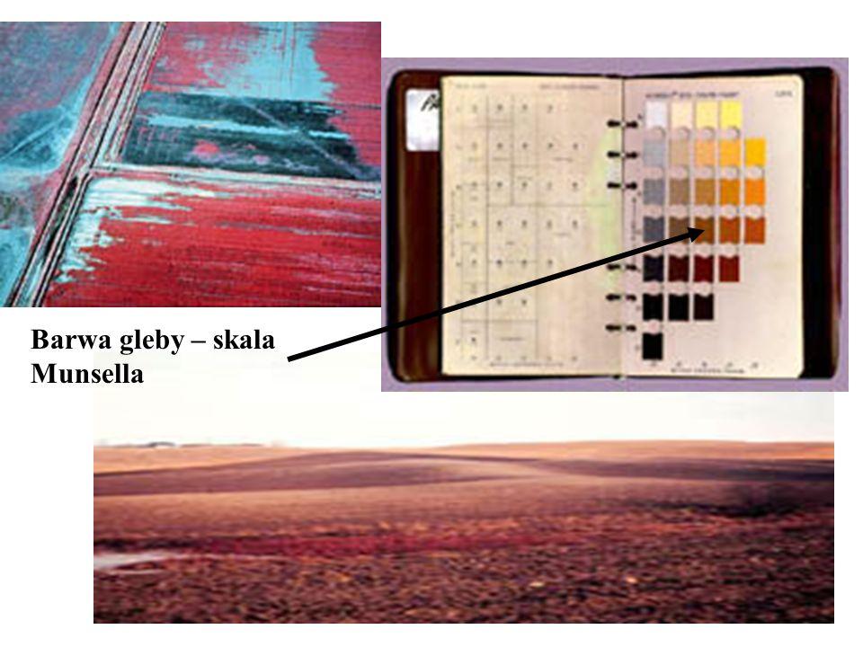 Barwa gleby – skala Munsella