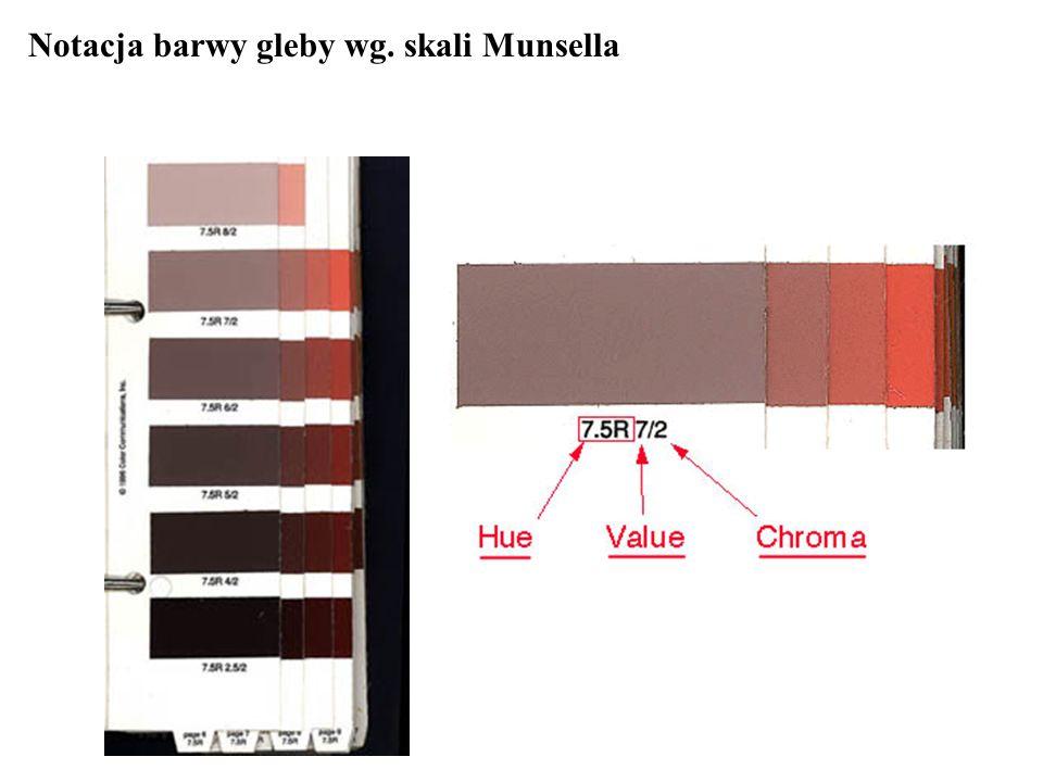 Notacja barwy gleby wg. skali Munsella