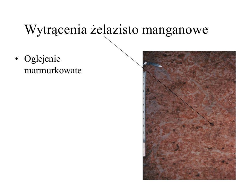 Wytrącenia żelazisto manganowe Oglejenie marmurkowate