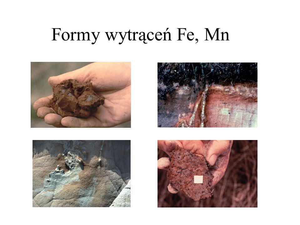 Formy wytrąceń Fe, Mn