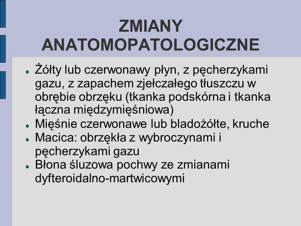 ROZPOZNAWANIE Wywiad epidemiologiczny Objawy kliniczne Zmiany anatomopatologiczne Badanie bakteriologiczne (wycinki mięśni i wysięki) – po śmierci zwierzęcia klostridia intensywnie przenikają z jelit, więc wyizolowanie ich od zwierzęcia martwego od co najmniej 24h nie jest istotnym faktem diagnostycznym