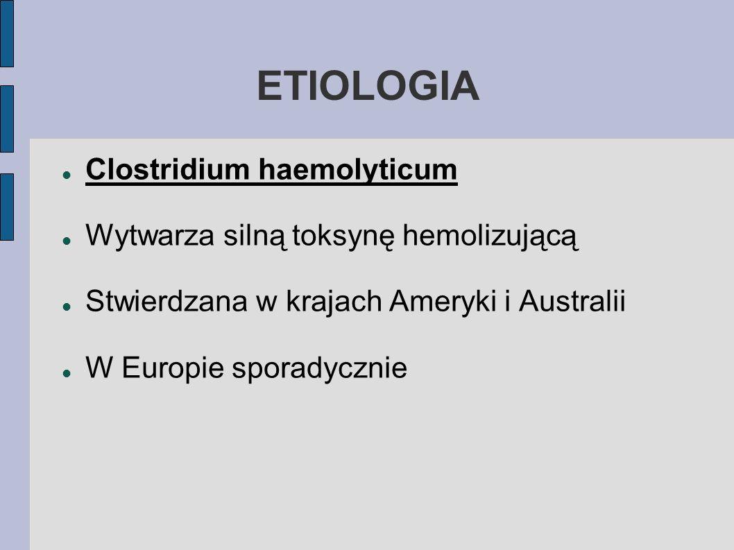 ETIOLOGIA Clostridium haemolyticum Wytwarza silną toksynę hemolizującą Stwierdzana w krajach Ameryki i Australii W Europie sporadycznie