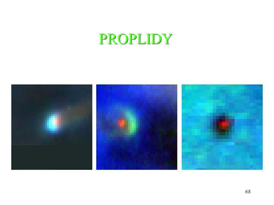 68 PROPLIDY