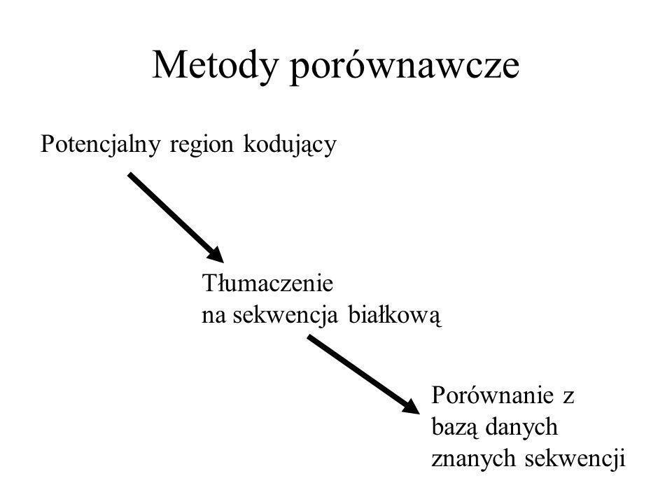 Metody porównawcze Potencjalny region kodujący Tłumaczenie na sekwencja białkową Porównanie z bazą danych znanych sekwencji