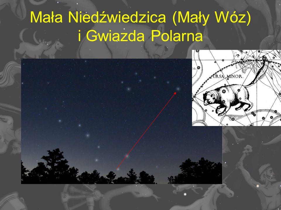 Mała Niedźwiedzica (Mały Wóz) i Gwiazda Polarna