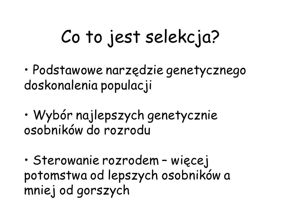 Co to jest selekcja? Podstawowe narzędzie genetycznego doskonalenia populacji Wybór najlepszych genetycznie osobników do rozrodu Sterowanie rozrodem –
