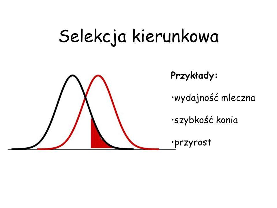 Oczekiwana reakcja na selekcję (na rok) Sumowanie obejmuje każdą ścieżkę (k=1,2,3,4)