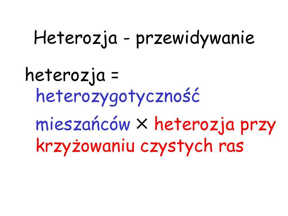 Heterozja - przewidywanie heterozja = heterozygotyczność mieszańców heterozja przy krzyżowaniu czystych ras