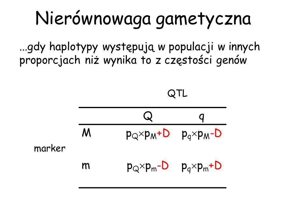 Nierównowaga gametyczna D t =D 0 (1-r) t NG utrzymuje się długo jeśli rekombinacja między genami zachodzi rzadko.