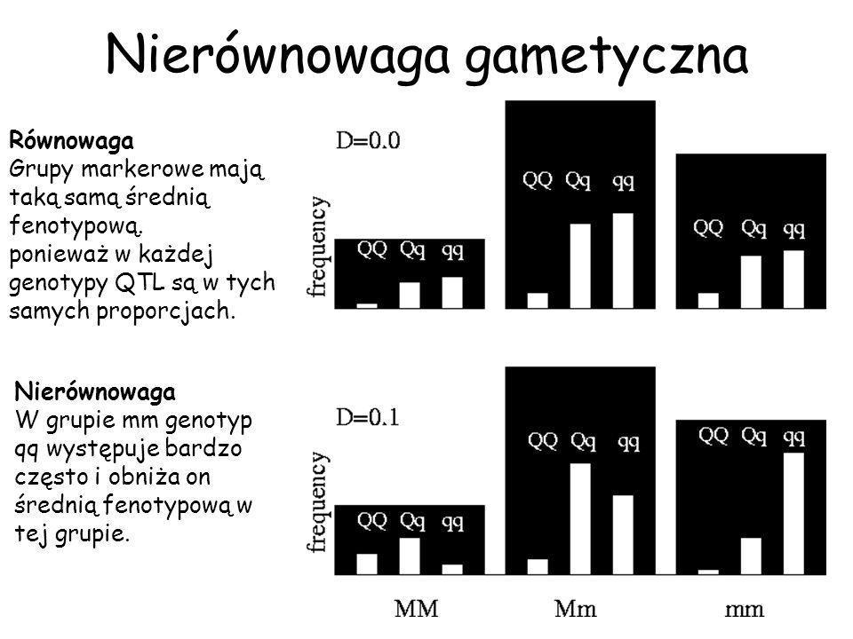 F0 MM QQ mm qq F1 Mm Qq F2 MM QQ Qq qq Mm QQ Qq qq mm QQ Qq qq Doświadczenie F2 Pomiar fenotypów tylko w pokoleniu F2 Badanie genotypów we wszystkich 3 pokoleniach