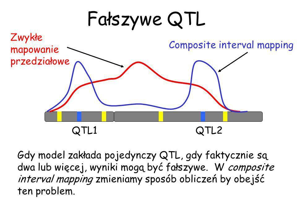 Fałszywe QTL QTL1QTL2 Composite interval mapping Gdy model zakłada pojedynczy QTL, gdy faktycznie są dwa lub więcej, wyniki mogą być fałszywe. W compo