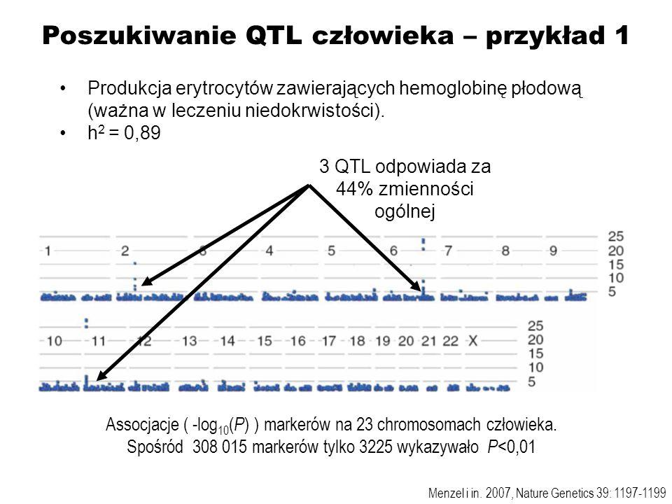 Menzel i in. 2007, Nature Genetics 39: 1197-1199 Assocjacje ( -log 10 ( P ) ) markerów na 23 chromosomach człowieka. Spośród 308 015 markerów tylko 32