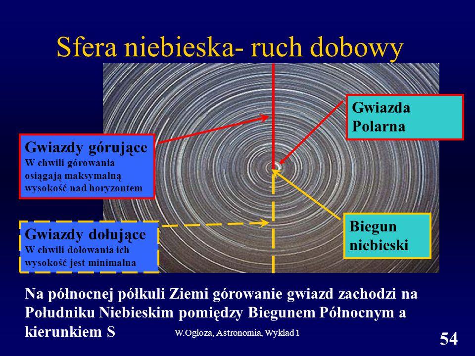W.Ogłoza, Astronomia, Wykład 1 54 Sfera niebieska- ruch dobowy Gwiazdy dołujące W chwili dołowania ich wysokość jest minimalna Gwiazdy górujące W chwili górowania osiągają maksymalną wysokość nad horyzontem Gwiazda Polarna Biegun niebieski Na północnej półkuli Ziemi górowanie gwiazd zachodzi na Południku Niebieskim pomiędzy Biegunem Północnym a kierunkiem S