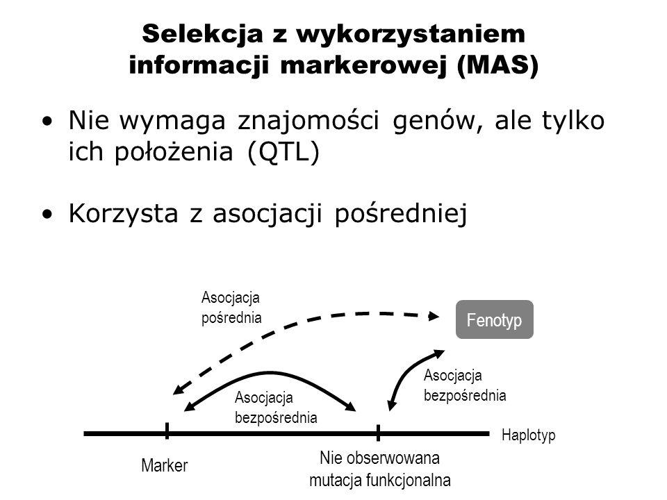 Selekcja z wykorzystaniem informacji markerowej (MAS) Nie wymaga znajomości genów, ale tylko ich położenia (QTL) Korzysta z asocjacji pośredniej Haplo