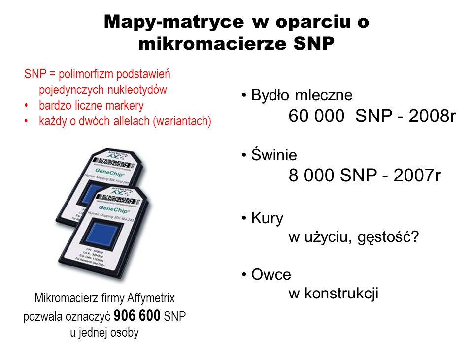 Bydło mleczne 60 000 SNP - 2008r Świnie 8 000 SNP - 2007r Kury w użyciu, gęstość? Owce w konstrukcji Mikromacierz firmy Affymetrix pozwala oznaczyć 90
