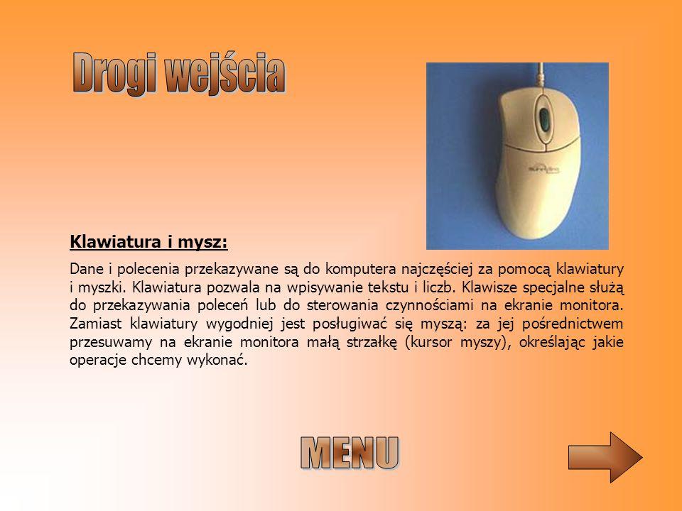 Dane i polecenia przekazywane są do komputera najczęściej za pomocą klawiatury i myszki. Klawiatura pozwala na wpisywanie tekstu i liczb. Klawisze spe