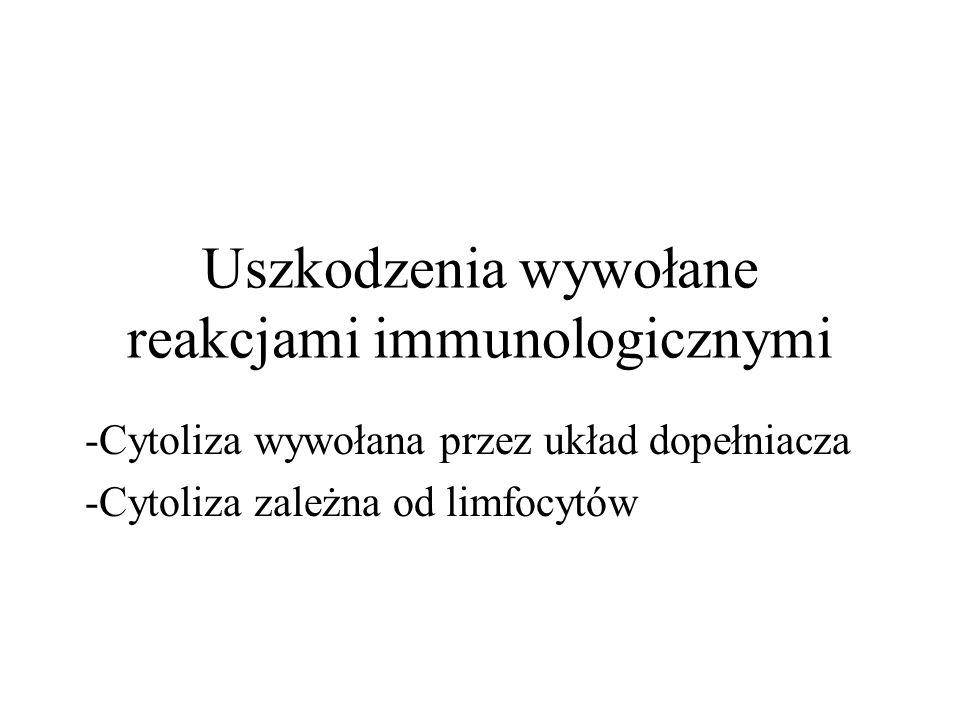 Uszkodzenia wywołane reakcjami immunologicznymi -Cytoliza wywołana przez układ dopełniacza -Cytoliza zależna od limfocytów
