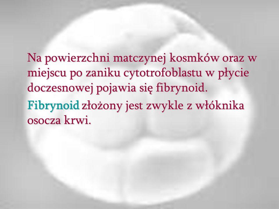 Na powierzchni matczynej kosmków oraz w miejscu po zaniku cytotrofoblastu w płycie doczesnowej pojawia się fibrynoid. Fibrynoid złożony jest zwykle z